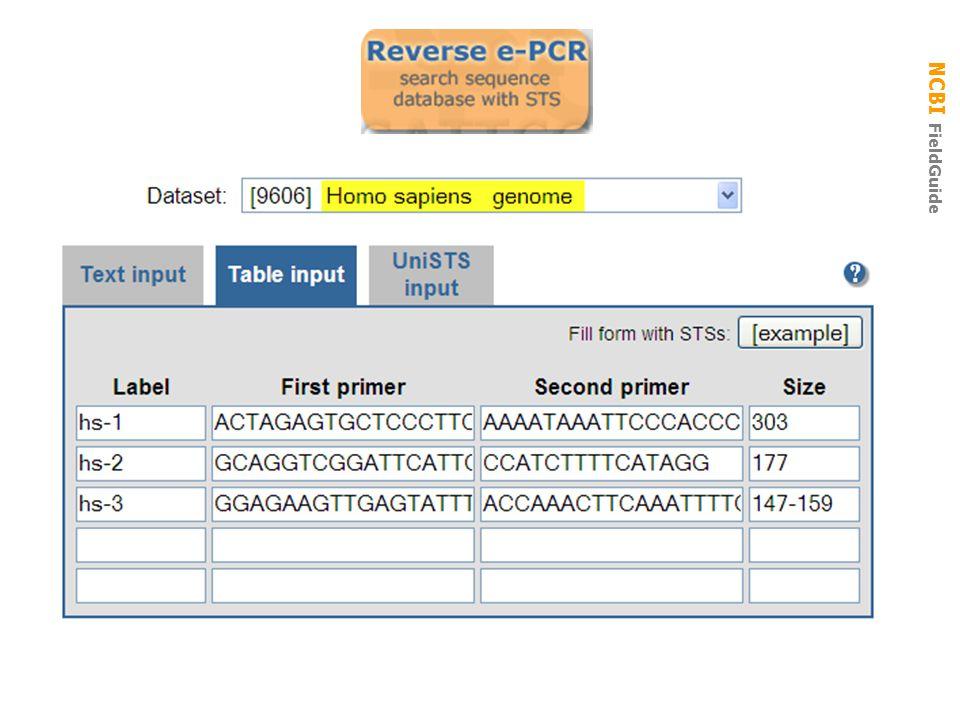 NCBI FieldGuide reverse e-pcr