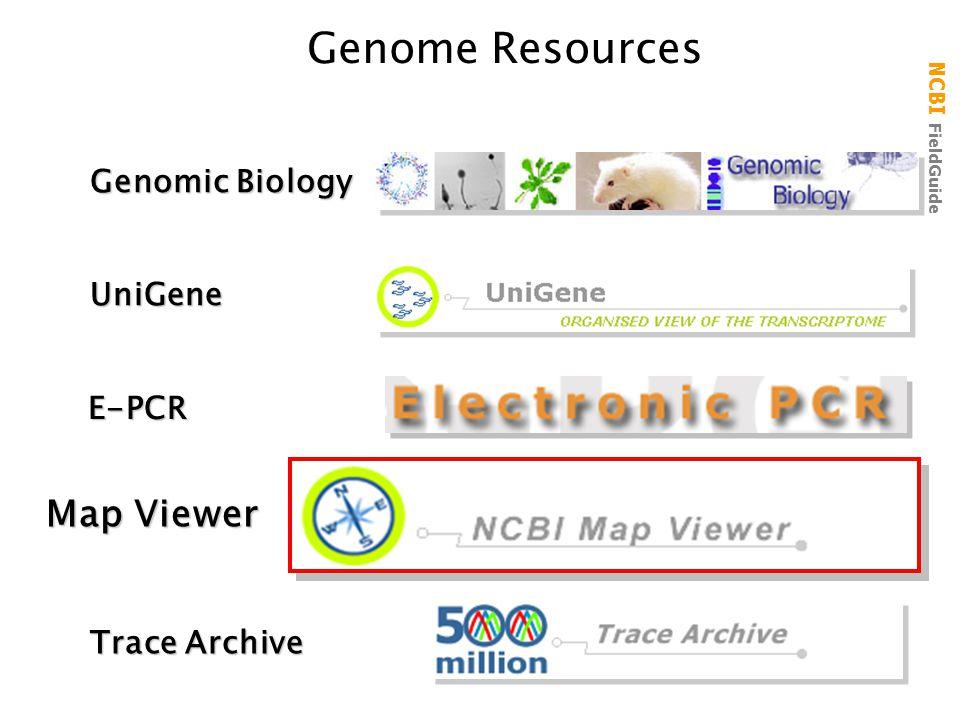 NCBI FieldGuide Genome ResourcesUniGene Trace Archive Genomic Biology Map Viewer E-PCR