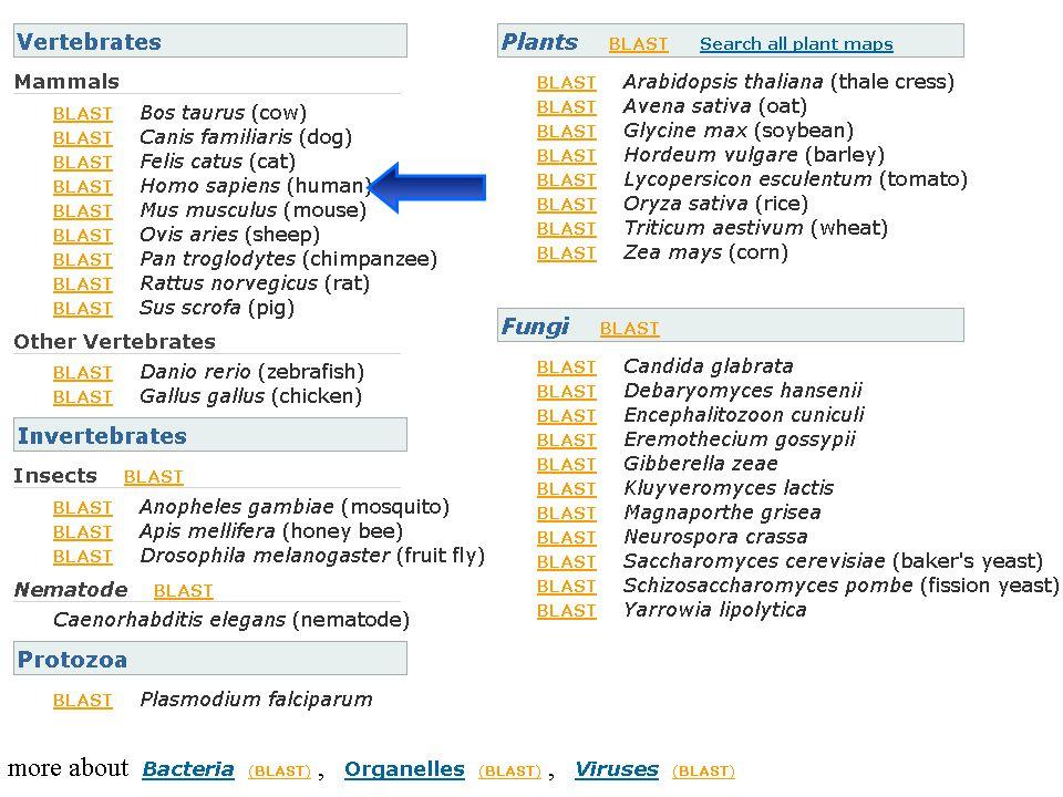 NCBI FieldGuide List View