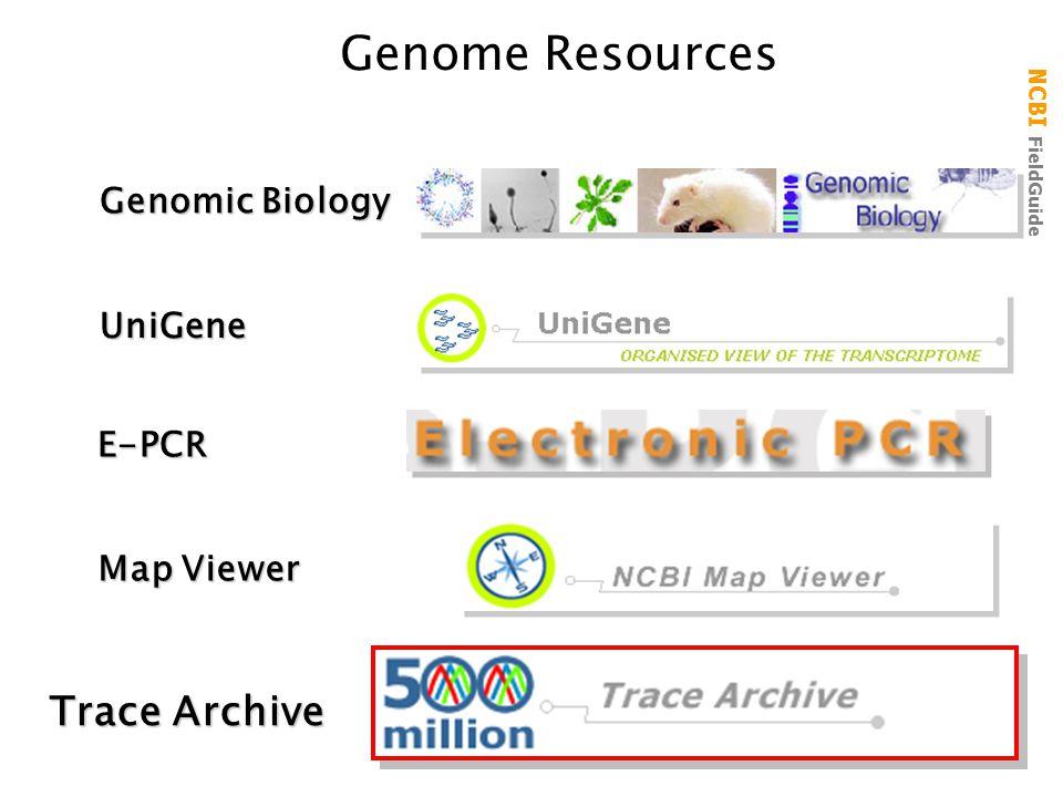 NCBI FieldGuide Genome ResourcesUniGene Map Viewer Genomic Biology Trace Archive E-PCR