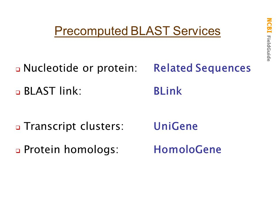 NCBI FieldGuide  Nucleotide or protein:Related Sequences  BLAST link:BLink Precomputed BLAST Services  Transcript clusters:UniGene  Protein homolo