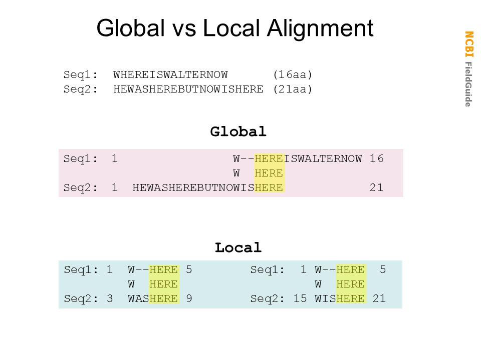 NCBI FieldGuide Global vs Local Alignment Seq1: WHEREISWALTERNOW (16aa) Seq2: HEWASHEREBUTNOWISHERE (21aa) Global Seq1:1 W--HEREISWALTERNOW 16 W HERE Seq2:1 HEWASHEREBUTNOWISHERE 21 Local Seq1: 1 W--HERE 5 W HERE W HERE Seq2: 3 WASHERE 9 Seq2: 15 WISHERE 21