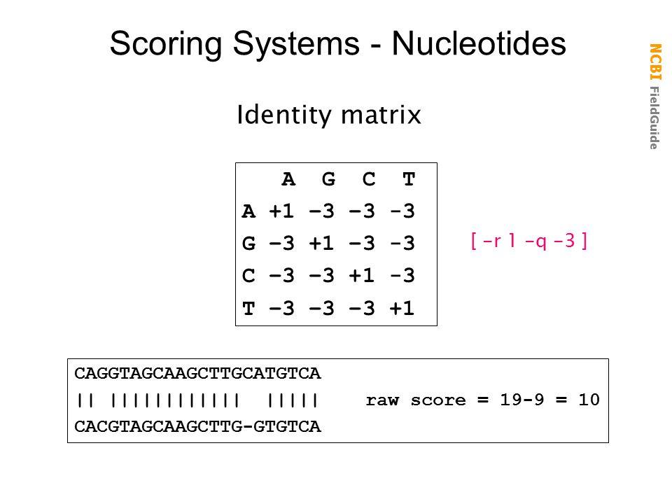 NCBI FieldGuide Scoring Systems - Nucleotides A G C T A +1 –3 –3 -3 G –3 +1 –3 -3 C –3 –3 +1 -3 T –3 –3 –3 +1 Identity matrix CAGGTAGCAAGCTTGCATGTCA || |||||||||||| ||||| raw score = 19-9 = 10 CACGTAGCAAGCTTG-GTGTCA [ -r 1 -q -3 ]