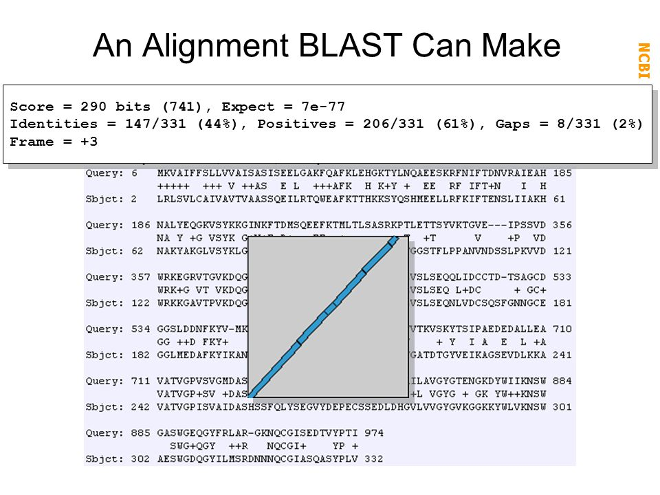 NCBI FieldGuide BLAST 2 Sequences (blastx) output: An Alignment BLAST Can Make Solution: compare protein sequences; BLASTX Score = 290 bits (741), Exp