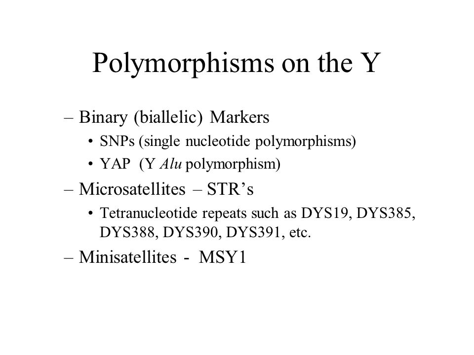 Polymorphisms on the Y –Binary (biallelic) Markers SNPs (single nucleotide polymorphisms) YAP (Y Alu polymorphism) –Microsatellites – STR's Tetranucleotide repeats such as DYS19, DYS385, DYS388, DYS390, DYS391, etc.