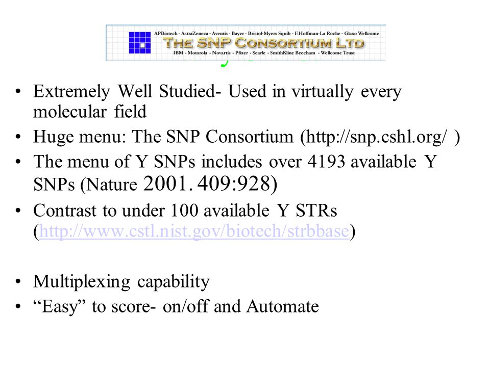 Why SNPs? Extremely Well Studied- Used in virtually every molecular field Huge menu: The SNP Consortium (http://snp.cshl.org/ ) The menu of Y SNPs inc