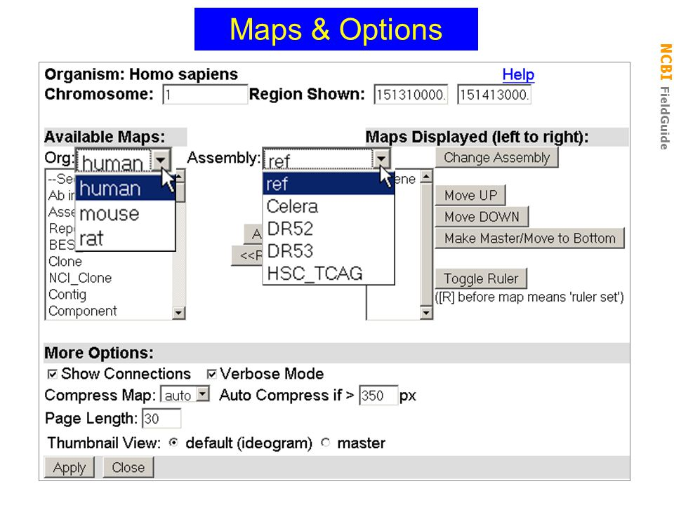 NCBI FieldGuide Maps & Options