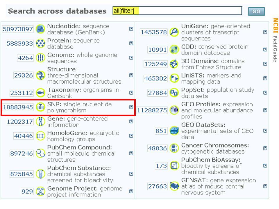 NCBI FieldGuide Entrez GEO