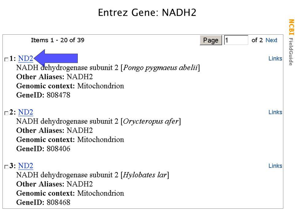 NCBI FieldGuide Entrez Gene: NADH2
