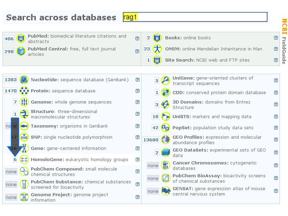 NCBI FieldGuide RAG1 → Homolgene RAG1