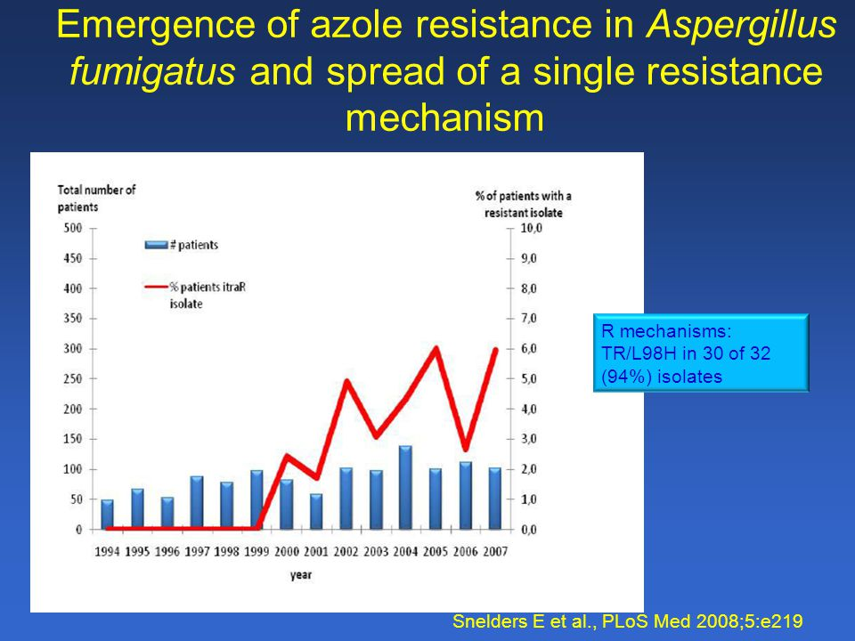 Emergence of azole resistance in Aspergillus fumigatus and spread of a single resistance mechanism Snelders E et al., PLoS Med 2008;5:e219 R mechanisms: TR/L98H in 30 of 32 (94%) isolates