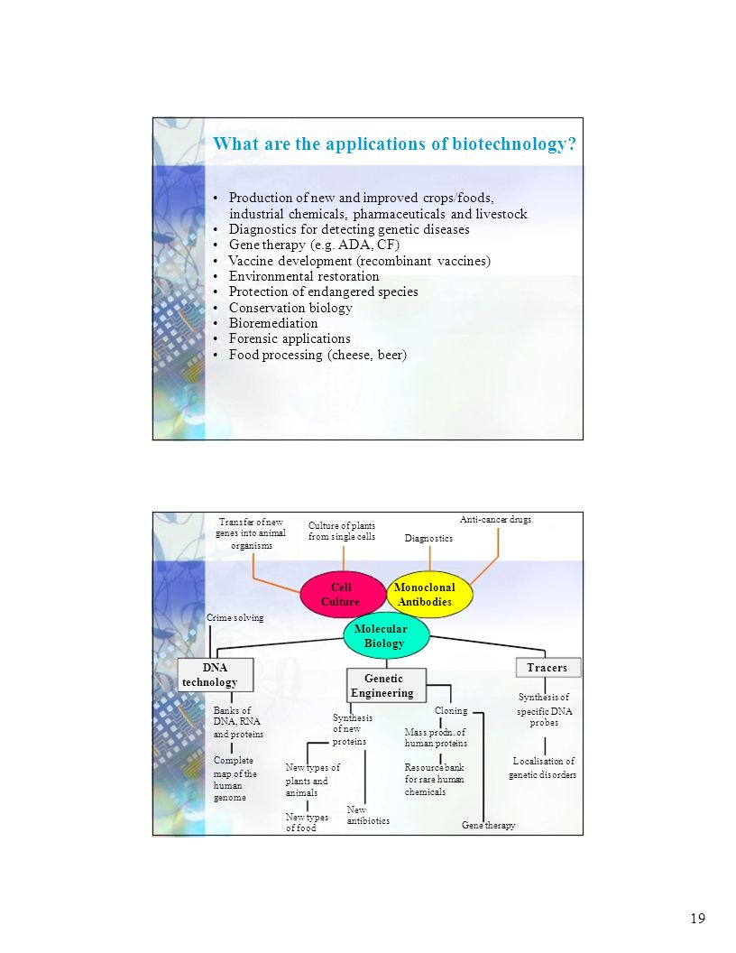 19 What are the applications of biotechnology.