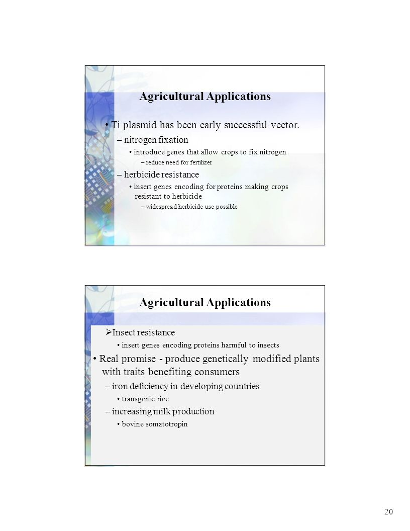 20 Agricultural Applications Ti plasmid has been early successful vector.