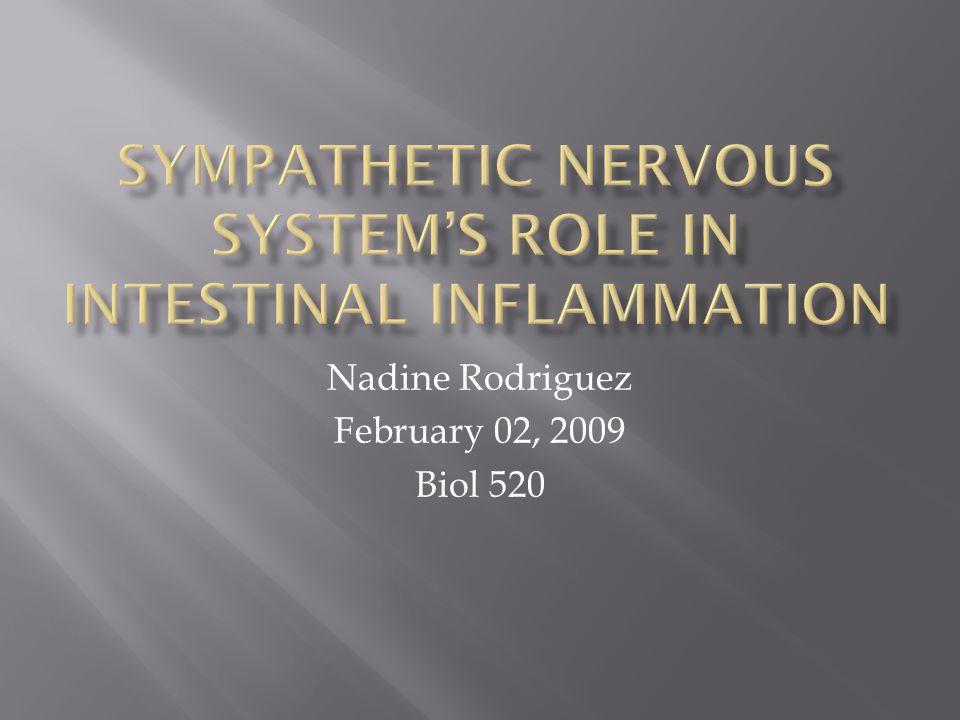 Nadine Rodriguez February 02, 2009 Biol 520