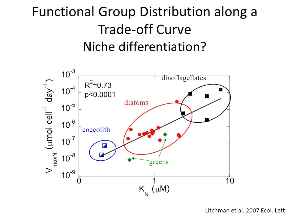 Functional Group Distribution along a Trade-off Curve Niche differentiation.