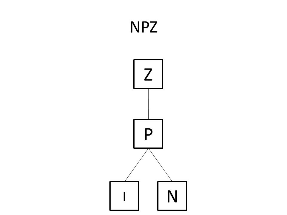 Z N I P NPZ