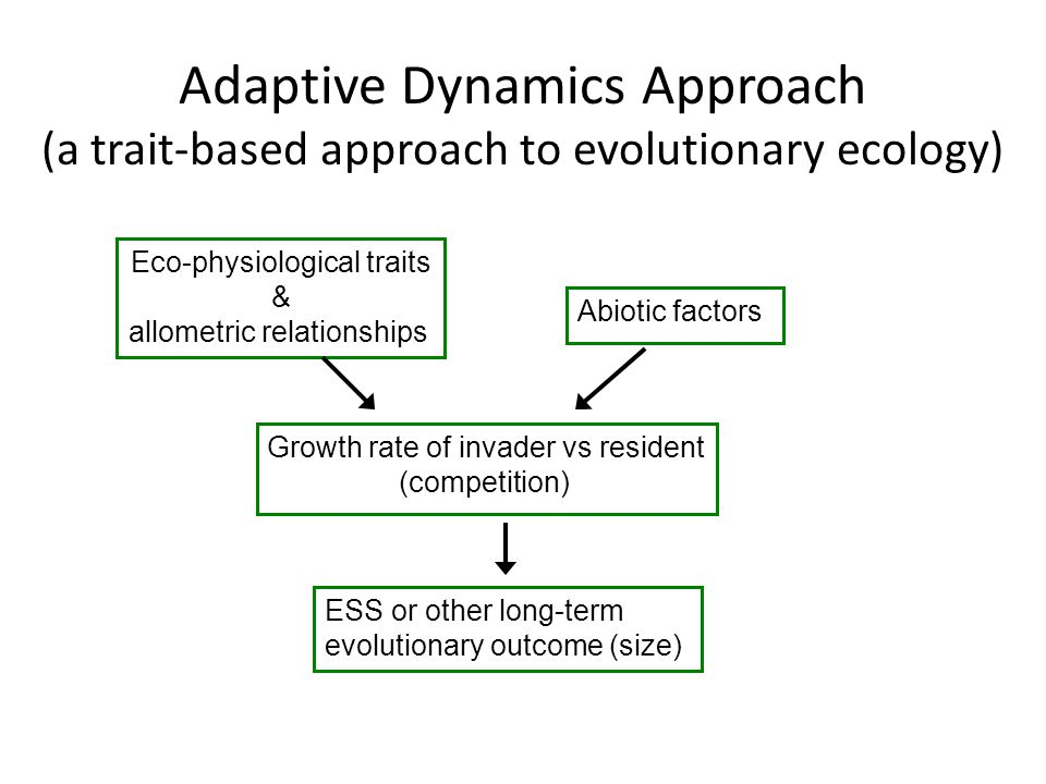 Adaptive Dynamics Approach (a trait-based approach to evolutionary ecology) Eco-physiological traits & allometric relationships Abiotic factors Growth rate of invader vs resident (competition) ESS or other long-term evolutionary outcome (size)