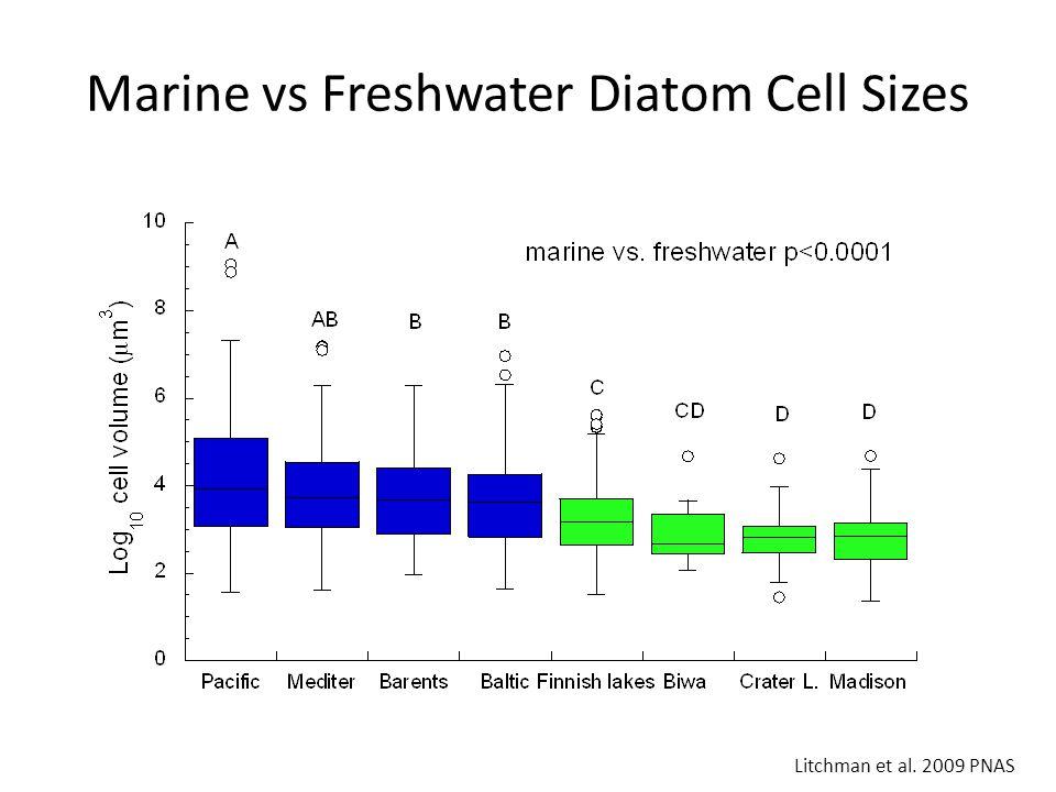Marine vs Freshwater Diatom Cell Sizes Litchman et al. 2009 PNAS