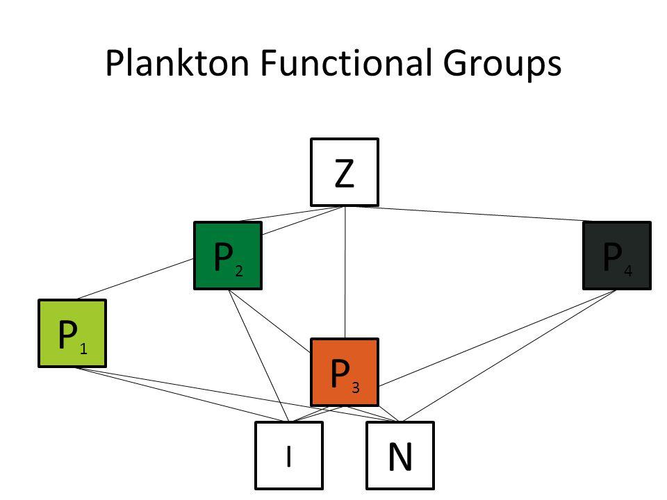 P2P2 P1P1 Z N I P3P3 P4P4 Plankton Functional Groups