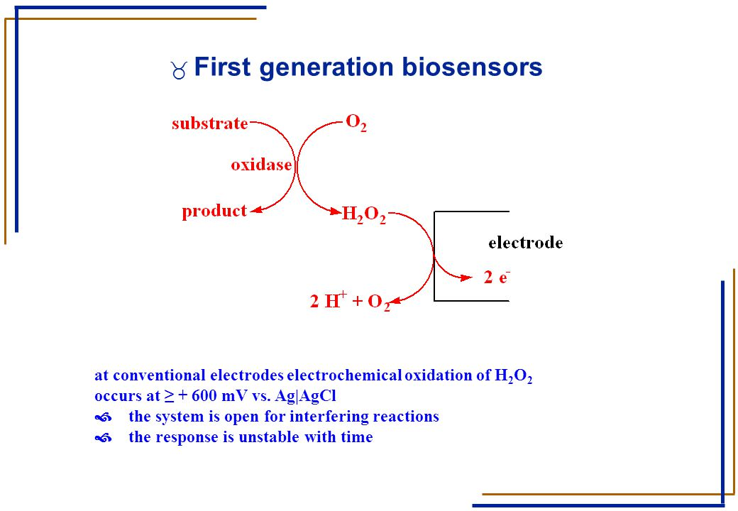 _ First generation biosensors at conventional electrodes electrochemical oxidation of H 2 O 2 occurs at ≥ + 600 mV vs. Ag|AgCl › the system is open fo