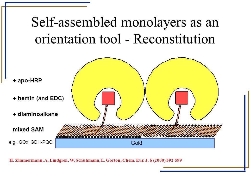 Self-assembled monolayers as an orientation tool - Reconstitution mixed SAM + diaminoalkane + hemin (and EDC) + apo-HRP e.g., GOx, GDH-PQQ H. Zimmerma