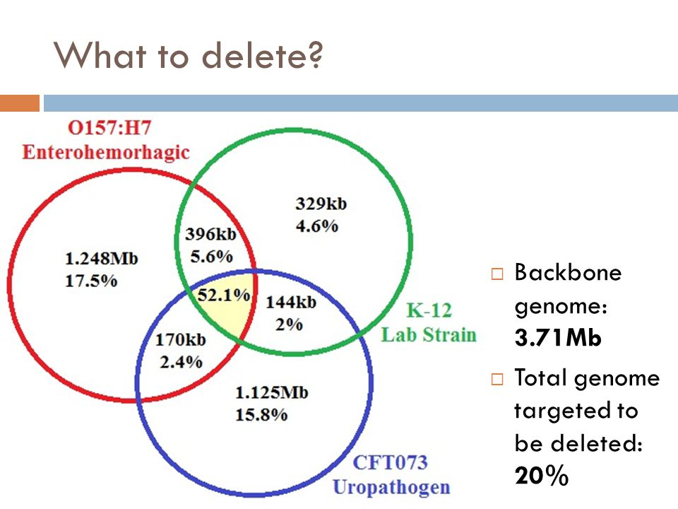 What to delete?  Backbone genome: 3.71Mb  Total genome targeted to be deleted: 20%