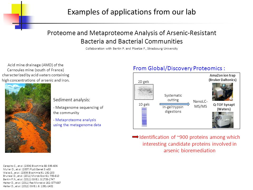 Examples of applications from our lab Collaboration with Bertin P. and Ploetze F., Strasbourg University Proteome and Metaproteome Analysis of Arsenic