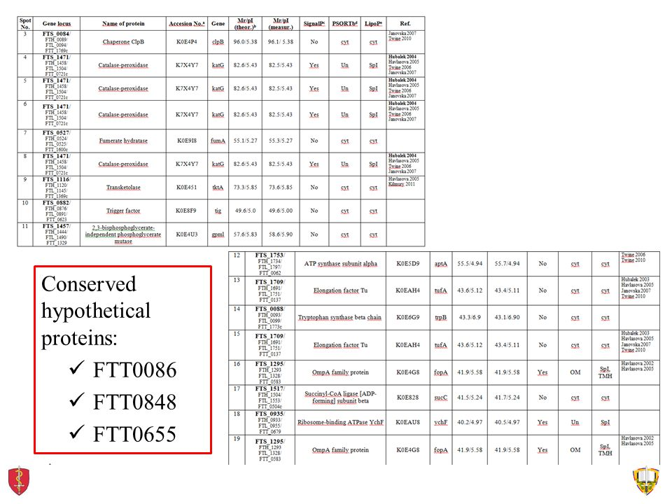 Conserved hypothetical proteins: FTT0086 FTT0848 FTT0655