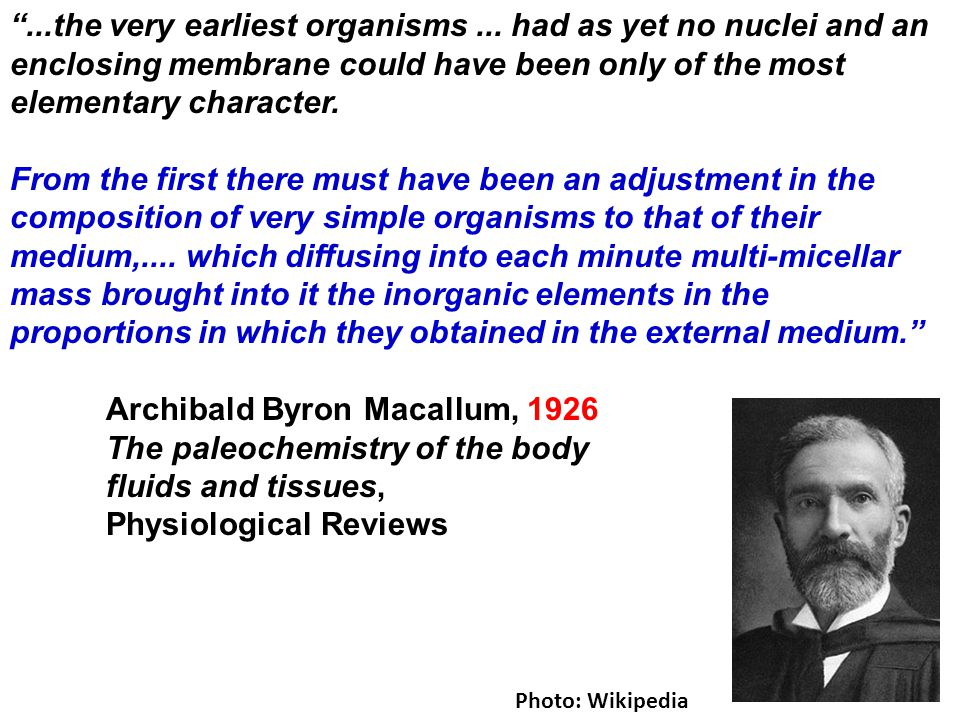 """""""...the very earliest organisms... had as yet no nuclei and an enclosing membrane could have been only of the most elementary character. From the firs"""