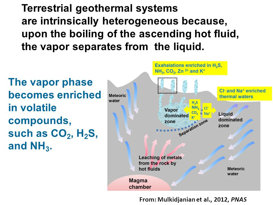 Terrestrial geothermal systems are intrinsically heterogeneous because, upon the boiling of the ascending hot fluid, the vapor separates from the liqu