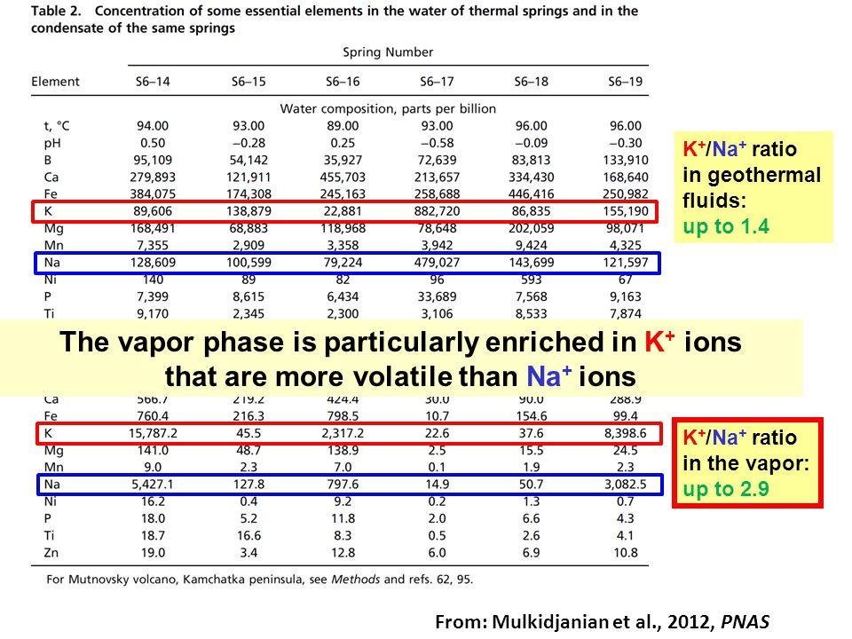 K + /Na + ratio in geothermal fluids: up to 1.4 K + /Na + ratio in the vapor: up to 2.9 The vapor phase is particularly enriched in K + ions that are