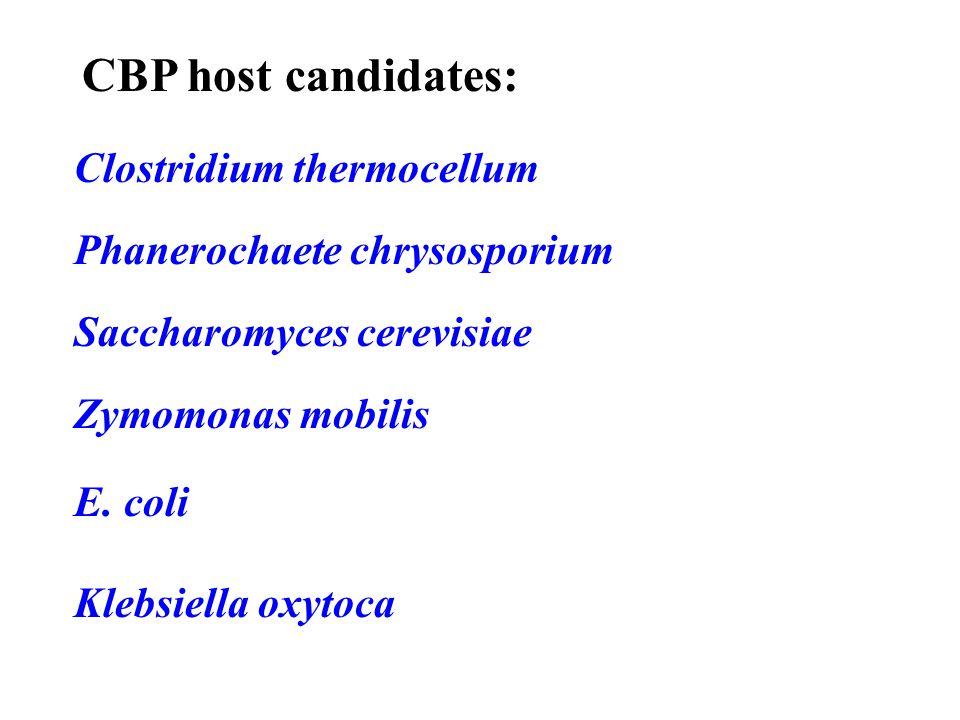 CBP host candidates: Clostridium thermocellum Phanerochaete chrysosporium Saccharomyces cerevisiae Zymomonas mobilis E. coli Klebsiella oxytoca