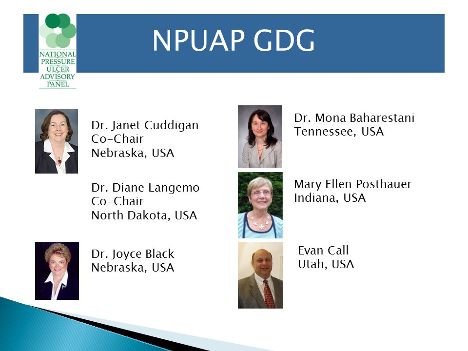 NPUAP GDG Dr. Janet Cuddigan Co-Chair Nebraska, USA Dr.