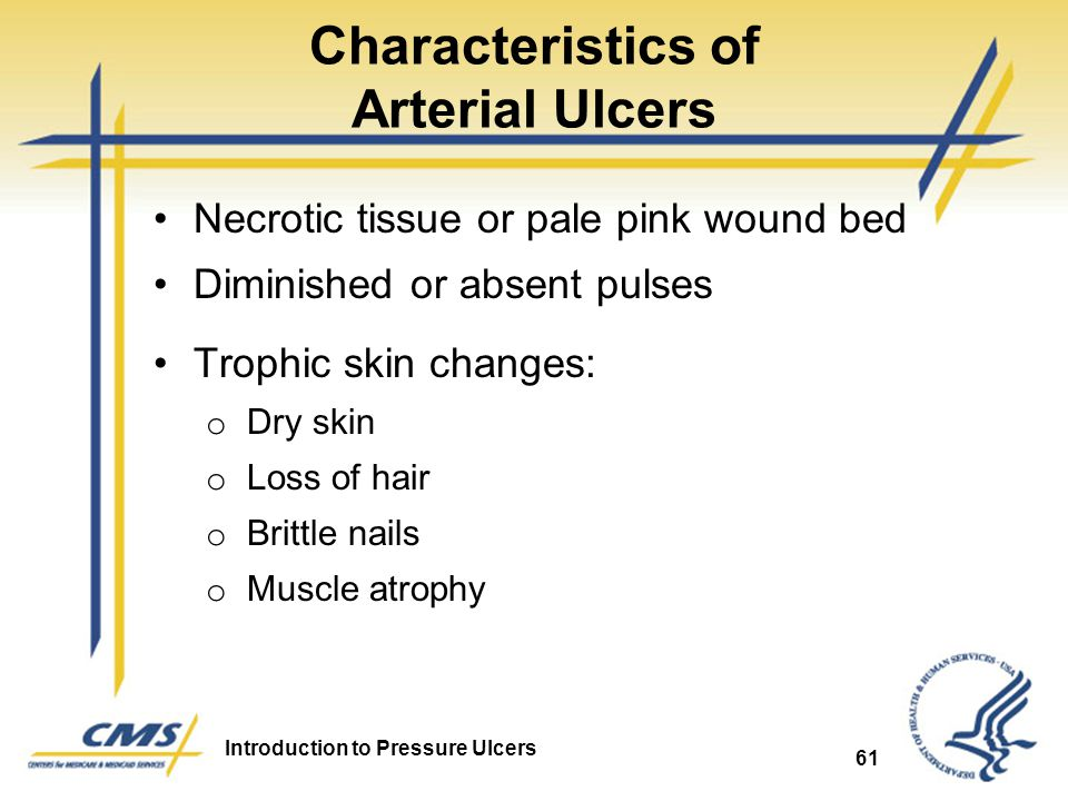 Introduction to Pressure Ulcers 61 Characteristics of Arterial Ulcers Necrotic tissue or pale pink wound bed Diminished or absent pulses Trophic skin