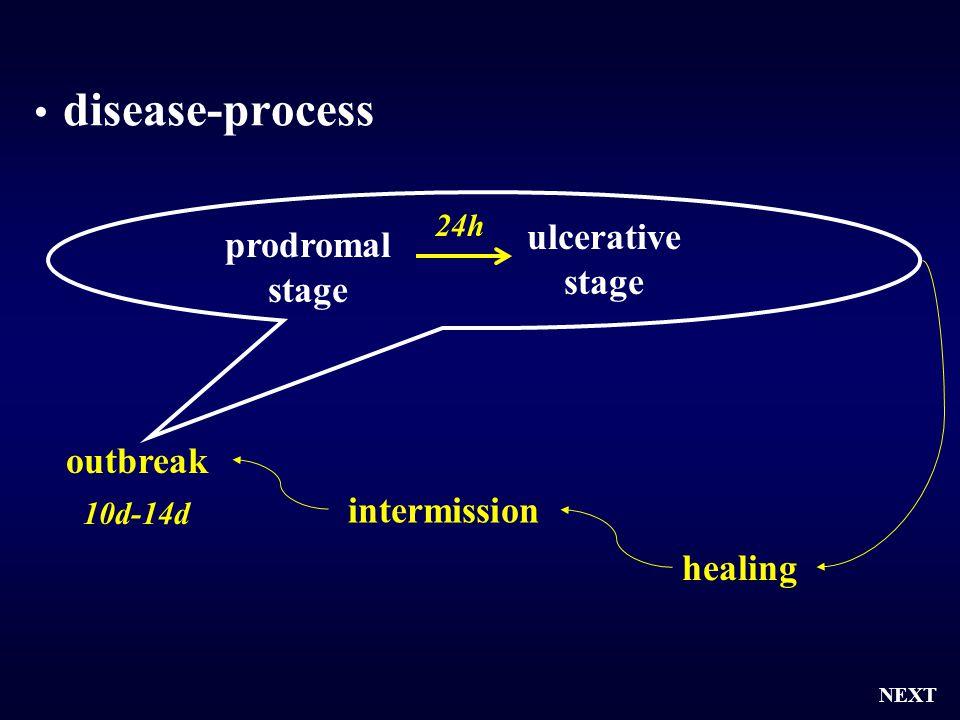 disease-process 24h 10d-14d outbreak NEXT intermission healing prodromal stage ulcerative stage