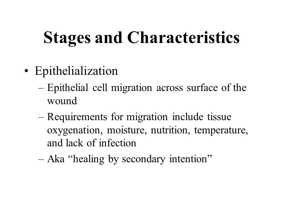 Stages and Characteristics Epithelialization –Epithelial cell migration across surface of the wound –Requirements for migration include tissue oxygena