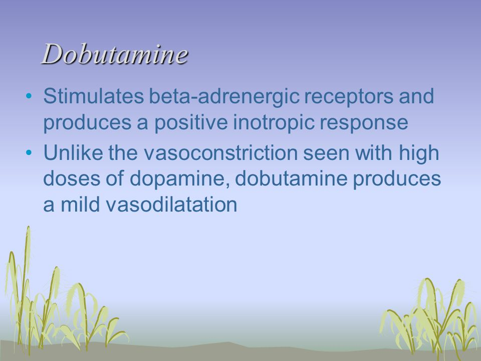 Dobutamine Stimulates beta-adrenergic receptors and produces a positive inotropic response Unlike the vasoconstriction seen with high doses of dopamine, dobutamine produces a mild vasodilatation