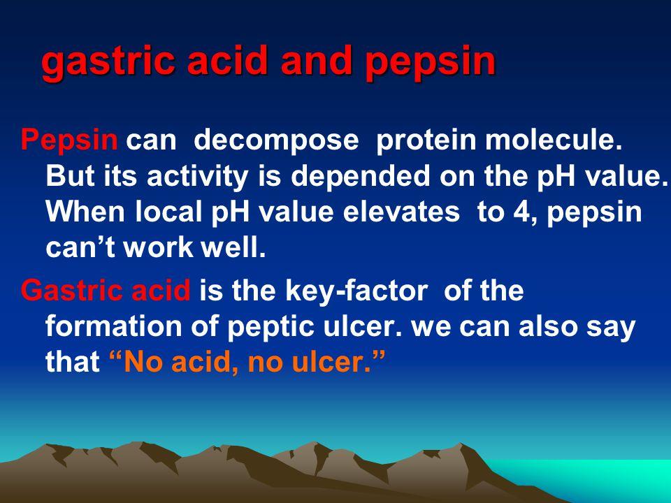 gastric acid and pepsin Pepsin can decompose protein molecule.