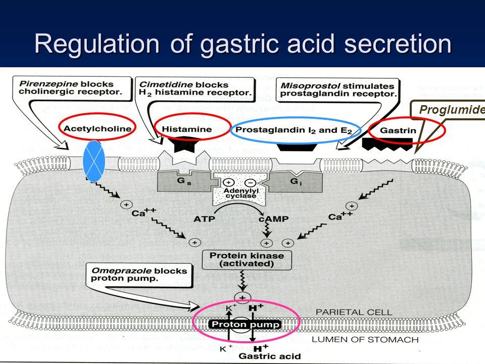 Regulation of gastric acid secretion Proglumide