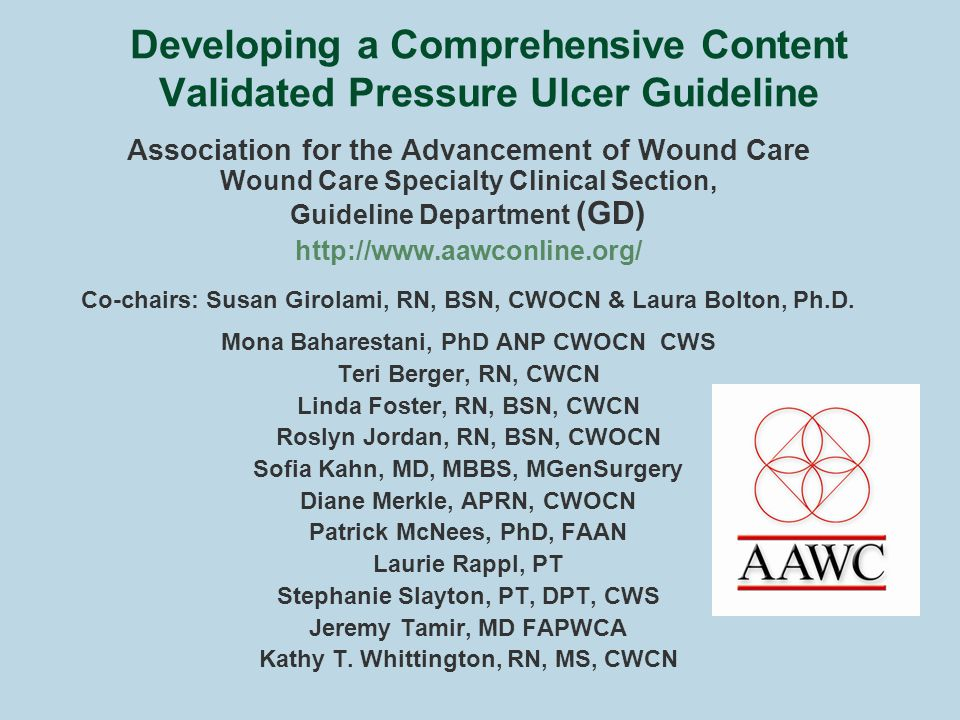 Developing a Comprehensive Content Validated Pressure Ulcer Guideline Association for the Advancement of Wound Care Wound Care Specialty Clinical Section, Guideline Department (GD) http://www.aawconline.org/ Co-chairs: Susan Girolami, RN, BSN, CWOCN & Laura Bolton, Ph.D.