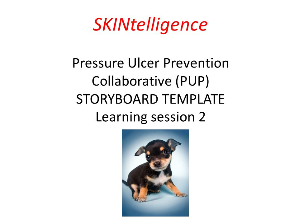 Pressure Ulcer Prevention (PUP) Collaborative Programme February 2014 – December 2014 SKINtelligence Pressure Ulcer Prevention Collaborative (PUP) STORYBOARD TEMPLATE Learning session 2