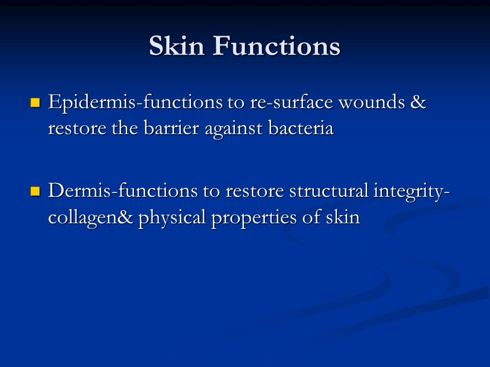 Skin Functions Epidermis-functions to re-surface wounds & restore the barrier against bacteria Epidermis-functions to re-surface wounds & restore the