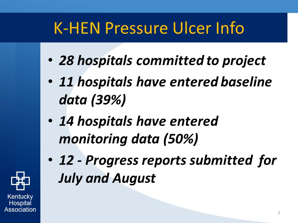 K-HEN Pressure Ulcer Info 28 hospitals committed to project 11 hospitals have entered baseline data (39%) 14 hospitals have entered monitoring data (50%) 12 - Progress reports submitted for July and August 3