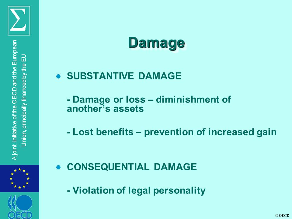 © OECD A joint initiative of the OECD and the European Union, principally financed by the EU DamageDamage l SUBSTANTIVE DAMAGE - Damage or loss – diminishment of another's assets - Lost benefits – prevention of increased gain l CONSEQUENTIAL DAMAGE - Violation of legal personality