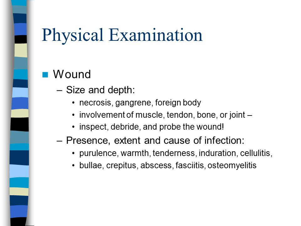 Physical Examination Wound –Size and depth: necrosis, gangrene, foreign body involvement of muscle, tendon, bone, or joint – inspect, debride, and probe the wound.