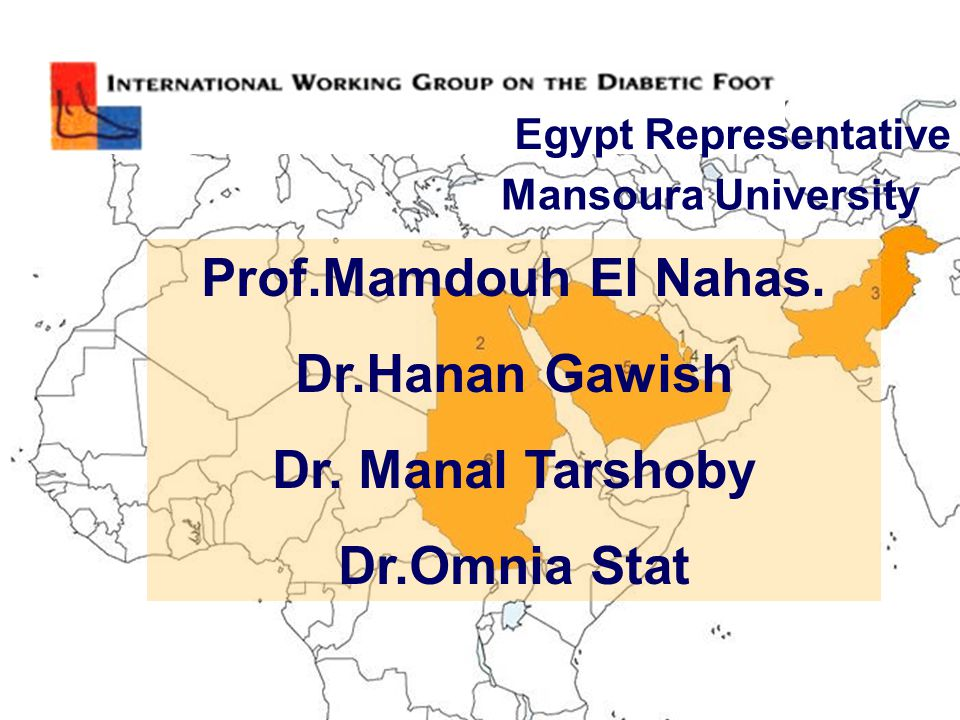 Egypt Representative Mansoura University Prof.Mamdouh El Nahas. Dr.Hanan Gawish Dr. Manal Tarshoby Dr.Omnia Stat