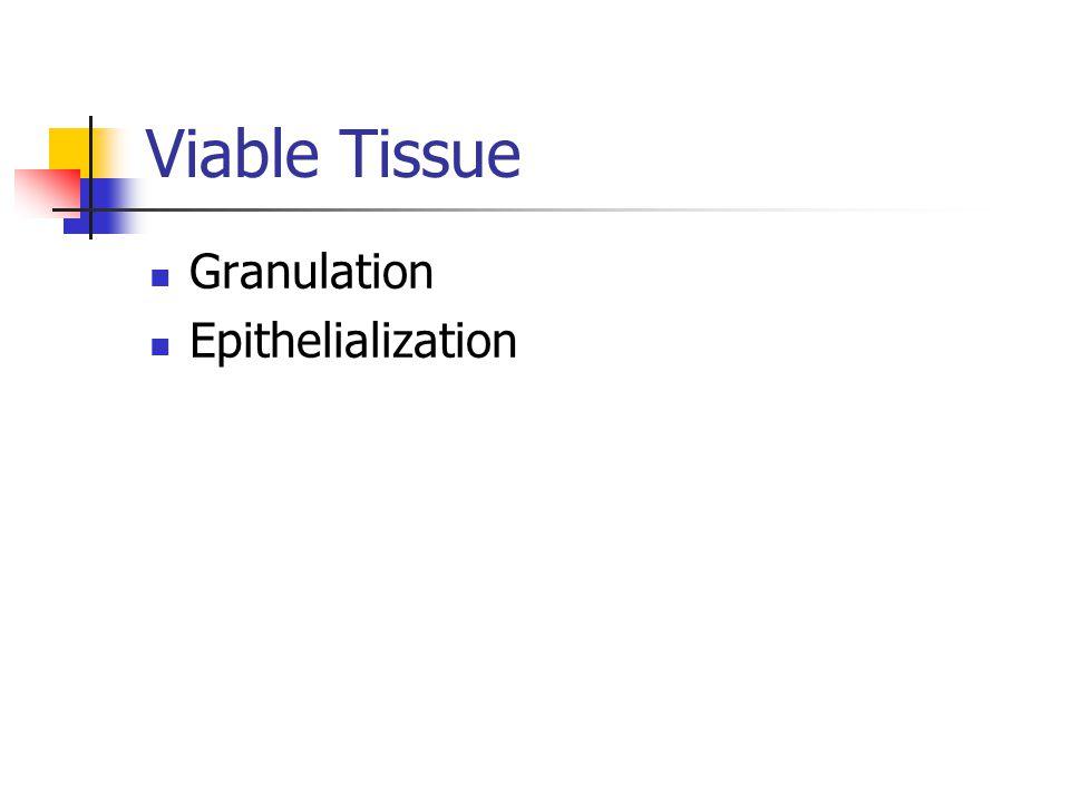 Viable Tissue Granulation Epithelialization