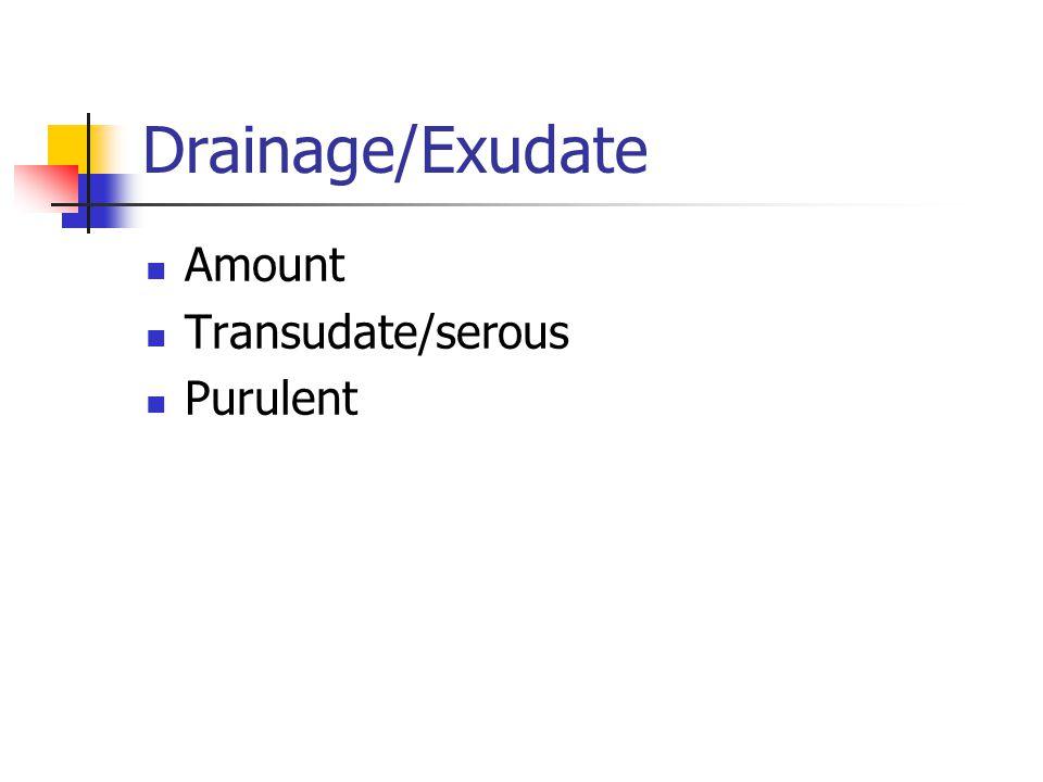 Drainage/Exudate Amount Transudate/serous Purulent