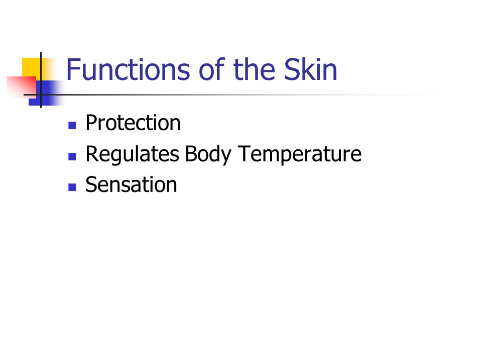 Functions of the Skin Protection Regulates Body Temperature Sensation