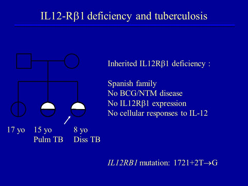 Inherited IL12R  1 deficiency : Spanish family No BCG/NTM disease No IL12R  1 expression No cellular responses to IL-12 IL12RB1 mutation: 1721+2T  G IL12-R  1 deficiency and tuberculosis 17 yo15 yo Pulm TB 8 yo Diss TB
